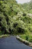 热带的高速公路 免版税库存图片