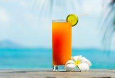 热带的鸡尾酒 免版税图库摄影