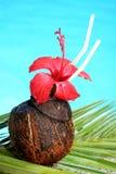 热带的鸡尾酒 免版税库存照片