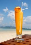 热带的鸡尾酒 免版税库存图片