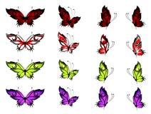 热带的蝴蝶 免版税图库摄影