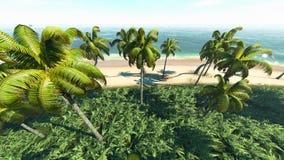 热带的3d 图库摄影