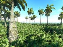 热带的3d 库存照片