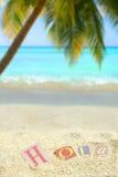 热带的hola 免版税库存照片