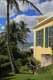 热带看法、棕榈树和小船 免版税库存照片