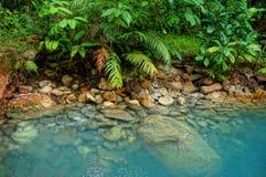 热带硫磺温泉 免版税库存照片