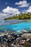 热带礁石-库克群岛-南太平洋 库存图片