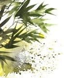 热带竹子叶子 皇族释放例证
