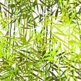 热带竹样式 向量例证