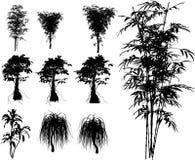 热带竹的工厂 向量例证