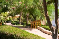 热带美丽的庭院 免版税图库摄影