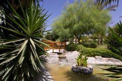 热带美丽的庭院 库存照片