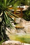 热带美丽的庭院 库存图片