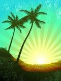 热带美好的日出 向量例证