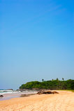 热带美好的横向 库存图片