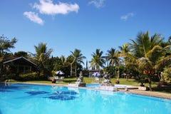 热带美好的池的游泳 库存照片