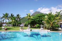 热带美好的池的游泳 库存图片
