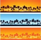 热带背景的日落 免版税库存图片