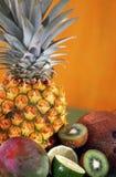 热带背景的果子 库存照片