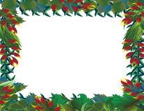 热带背景的森林 免版税库存图片