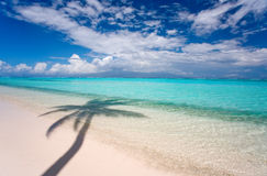 热带背景的海滩 图库摄影