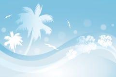 热带背景 库存照片
