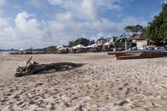 热带节假日 库存图片