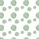 热带花卉在wihte backgroung的密林叶子无缝的样式 库存例证