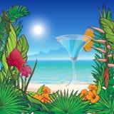 热带花卉框架和全景 向量例证