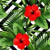 热带花和叶子样式,黑白几何b 库存图片