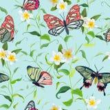 热带花和蝴蝶无缝的样式 花卉密林 向量例证