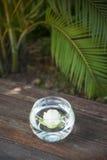 热带花桌装饰 免版税库存照片