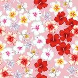 热带花纹花样无缝的桃红色背景 免版税库存图片