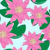热带花,叶子,桃红色莲花,无缝的花卉样式背景 库存例证