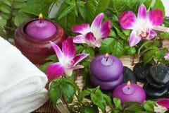 热带茶点的温泉 库存图片