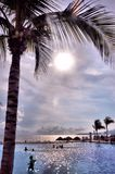 热带蓝色日落 库存图片