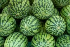 热带西瓜 免版税库存照片