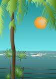 热带视图 库存例证
