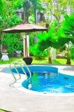 热带豪华池的游泳 免版税库存照片