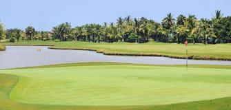 热带路线的高尔夫球 免版税库存照片