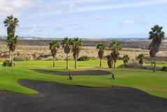 热带路线的高尔夫球 免版税库存图片