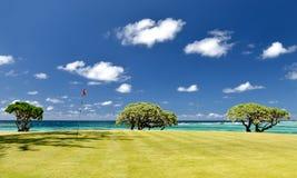热带路线的高尔夫球 免版税图库摄影