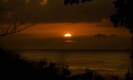 热带金黄的日落 免版税库存照片