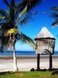 热带阿曼 马斯喀特海滩 免版税库存照片