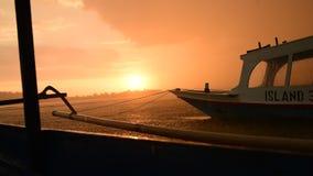 热带雨在印度尼西亚 影视素材