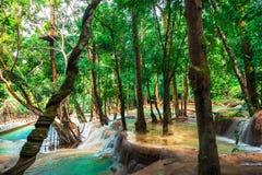 热带雨林发出刺耳声与匡Si瀑布 老挝 免版税库存照片