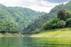 热带雨林在泰国的中部, 免版税库存照片