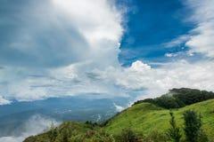 热带雨林在doiinthanon国家公园早晨光风景视图雨林,泰国 免版税库存图片