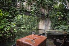 热带雨林巡航 免版税库存图片