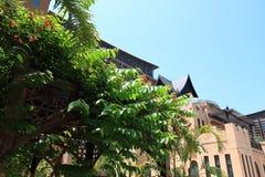 热带雨林手段 免版税库存照片